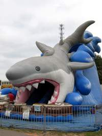 This shark is inflated and blown away every day